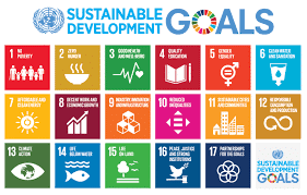Nigeria presents voluntary national review report on SDGs to UN